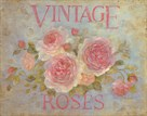 Vintage Rose by Debi Coules