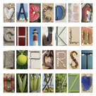 Coastal Alphabet by Mike Toy