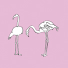Flamingo Duo by Sandra Jacobs