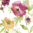 Spring Peony by Sandra Jacobs