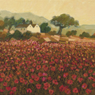 Poppy Field Near Aix-En-Provence by Hazel Barker