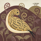 Curious Curlew by Catriona Hall