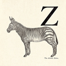 Animal Alphabet - Z by The Vintage Collection
