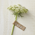 Love Note - Posy by Camille Soulayrol