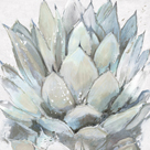 Cereus Echeveria by Tania Bello