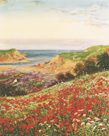 Poppies and Sea Lavender by John Halford Ross