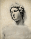 Classical Study - Adonis by Bill Philip