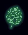 Neon Monstera by Otto Gibb