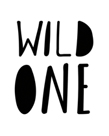Wild One by Joni Whyte