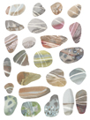 Watercolour Pebbles by Sandra Jacobs
