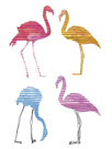 Flamingo Fandango I by Sandra Jacobs