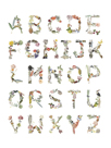 Art Alphabet by Joelle Wehkamp