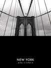 NYC Focus - Bridge by Alan Copson
