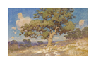 High Desert Oaks by Julian Onderdonk