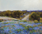 Bluebonnets at Late Afternoon by Julian Onderdonk