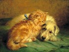 Kitten and Puppy by John Fitz Marshall