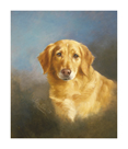 Golden Retriever by Lilian Cheviot