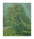 Horse Chestnut Tree in Blossom by Vincent Van Gogh