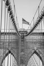 Brooklyn Flag by Alan Copson