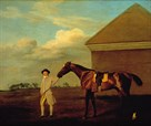 Firetail with his Trainer on Newmarket Heath by George Stubbs