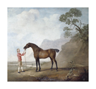 Scape Flood by George Stubbs