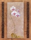 Contemporary Orchid I by Carney