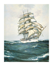 The White Clipper by Montague Dawson