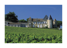 Chateau D'Yquem, Sauternes, France by Mick Rock