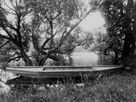 Rowing Boat on the Pond in Ville d' Avray by Eugene Atget