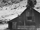 Barn in a Valley, Back of Mission, San Jose by Dorothea Lange