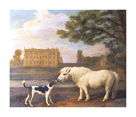 Pony And Hound In Front Of Brocklesby Park by George Stubbs