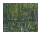 Trees and Undergrowth by Vincent Van Gogh