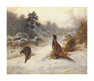 Cock and Hen Pheasants in Winter by Archibald Thorburn