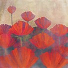 Poppies II by Holman