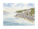 Fowey From Boddinick by John Chisnall