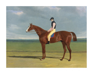 St Leger Winner 1828 by J.F Herring Junior