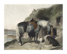 Favourite Pony by Edwin Landseer