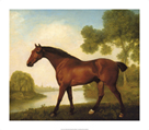 Truss, A Hunter by George Stubbs