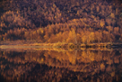 Autumn Reflections by Staffan Widstrand