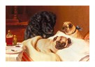 Retriever And Two Pugs by Horatio Henry Couldery