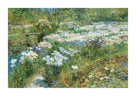 The Water Garden, 1909 by Frederick Childe Hassam