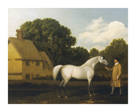 Gimcrack by George Stubbs