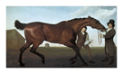Hambletonian by George Stubbs
