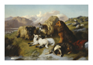 Sheepdog And Flock by Edwin Landseer