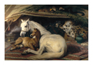 The Arab Tent, 1866 by Edwin Landseer