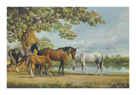 Horses Beside A Lake by Frank Wootton