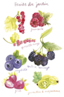 Fruits du Jardin by Katrien Soeffers