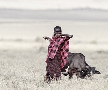Maasai Master Print by Wink Gaines