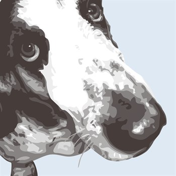 Bassett Hound Print by Emily Burrowes