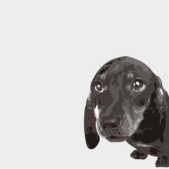 Dachshund Print by Emily Burrowes